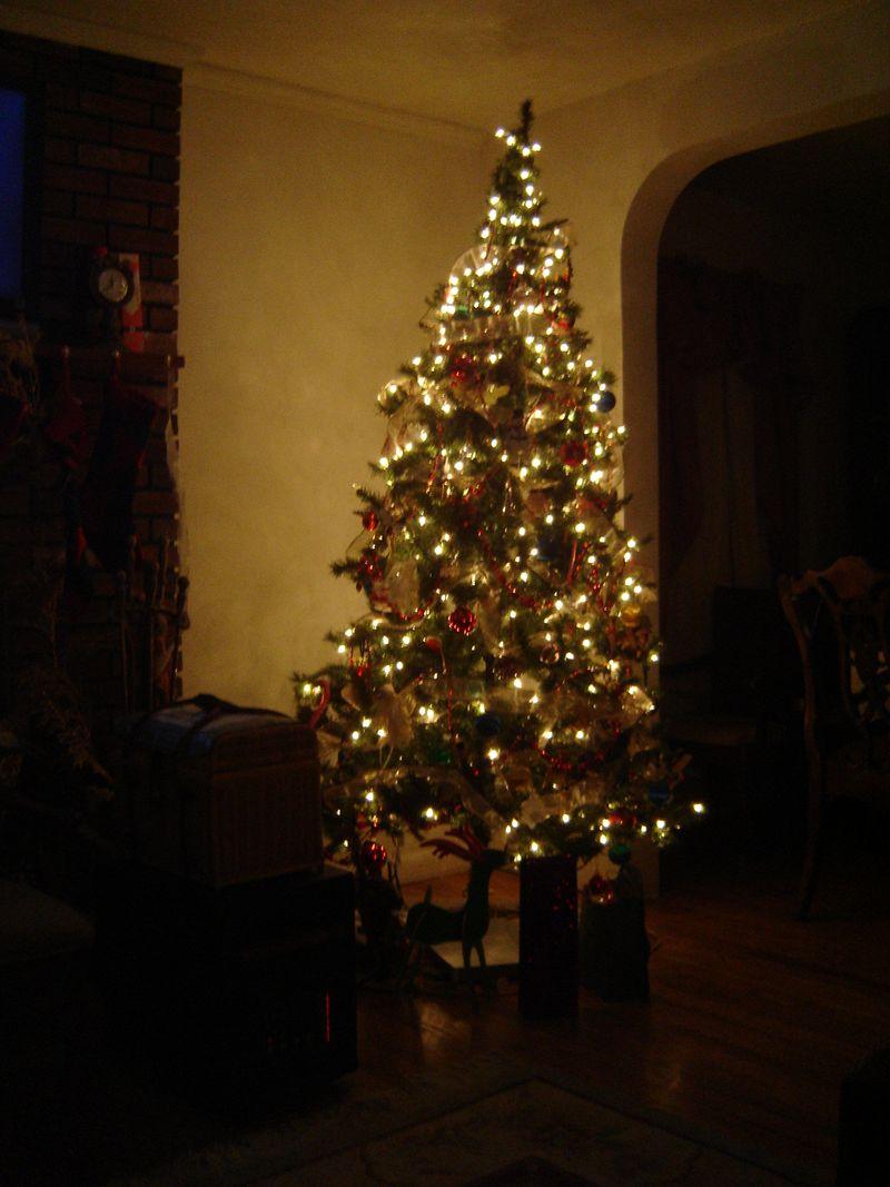 Heather'schristmastree